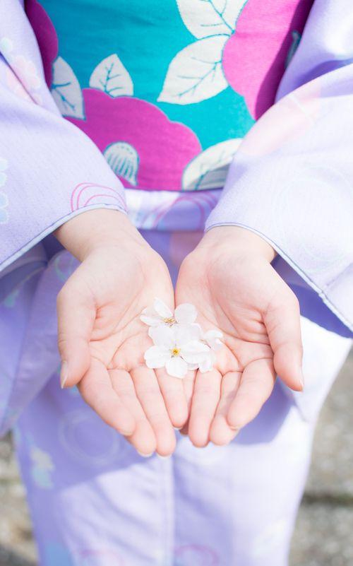 着物の女性と桜の花びら